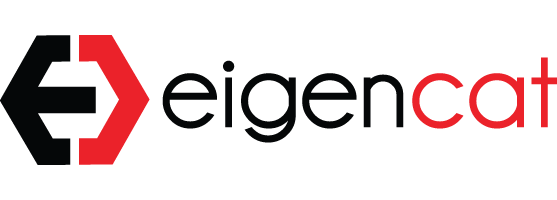 Eigencat.png