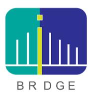 brdge20210125114336.png